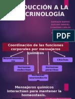 Introducción a La Endocrinología