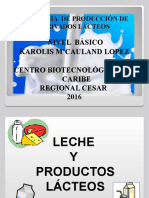 DIAPOSITIVAS Productos-lacteos (1)