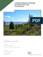 Onondaga Lake Draft Restoration Plan