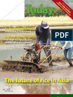 RiceToday Vol. 5, No. 3