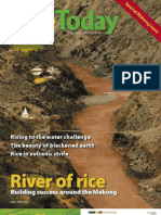 RiceToday Vol. 6, No. 2