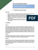 Programa 01 Neurociencia Cognitiva Basica