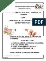 Descripcion de Los Procesos Sensopercitivos