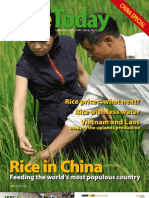 Rice Today Vol. 6, No. 4