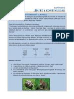 02-LIMITES.pdf