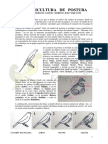 Canaricultura de _postura 5pags