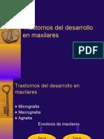 Tema 2 PATOLOGIA BUCAL Trastornos Del Desarrollo en Maxilares