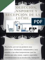 recoleccintransporteyrecepcindelaleche-121127063044-phpapp01