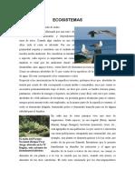 Ecosistemas maritimo