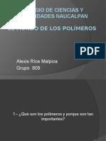 El Mundo de Los Polimeros