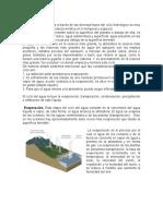 Ciclo-hidrológico.docx