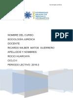 Trabajo Rocio Huarcaya Sociologia Juridica Verdadero