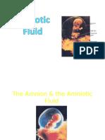 Amniotic Fluid Mine