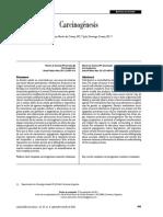 Carcinogénesis.pdf