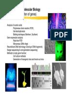 WS11_Chapter09_.pdf
