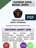 Presentasi Audit Internal.pptx
