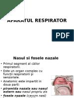 Fose Nazale Curs 4