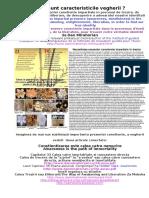 29107653-Necesitatea-vegherii-sau-a-prezentei-constiente-impartiale-pentru-eliberare-trezire-iluminare.pdf