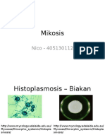 Mikosis Nico