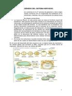 Monofrafía.pdf