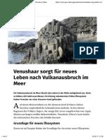 Venushaar sorgt fuer neues Leben nach Vulkanausbruch im Meer