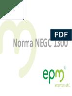 80389856-NormaNEGC1300.pdf