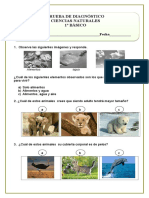 Diagnostico Ciencias Naturales (2)