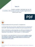 Derecho Procesal Civil III - Tema IV