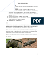 PLAN DE CLASE N°4.Reptiles