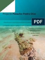 Projecto Patacho Pedro Dias