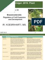 MATERI 7-BRASSINOSTEROID