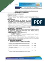TDR SERVICIO ENCHAPADO.docx