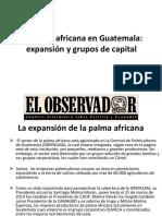 05 La Palma Africana en Guatemala