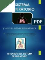 Sistema Respiratorio (Copia en Conflicto de Nicole Acevedo)