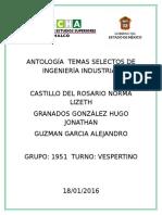 Antologia de Temas Selectos de Ingenieria Industrial