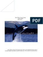 killer whales research paper