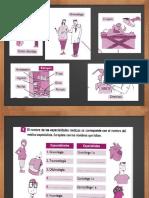Vocabulario Salud, Enfermedades