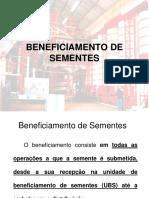Docslide.com.Br Ergonomia Das Atividades de Corte de Mini Estacas e Classificacao de Mudas