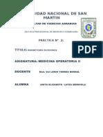 2da practica ruminotomía.docx