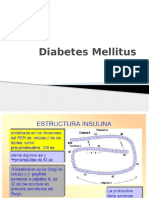 Diabetes Mellitus Expo