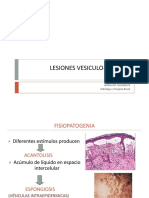 Lesiones Vesiculo-bulosas Amgb