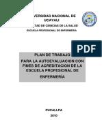 PLAN DE AUTOEVALUACION ESCUELA ENFERMERIA.pdf
