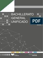 BGU2.pdf
