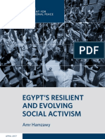 Egypt's Resilient and Evolving Social Activism
