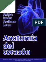 AnatomÝa del coraz¾n