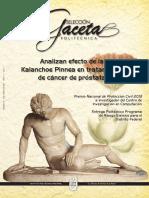 ENERO-2014.pdf