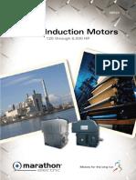 SB522LargeInductionMotorsBrochure( Penjelasan WP 2).pdf