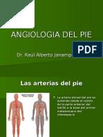Angiologia - Histologia Del Pie