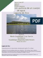 Contaminacion quimica del agua