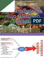 2 Fisiopatología Del Flujo Sanguíneo Cerebral